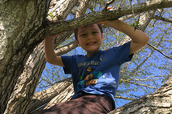 samuel-in-tree-2016